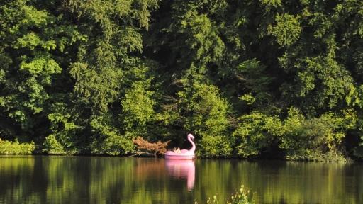 Ein als Flamingo geformtes Tretboot auf einem See.