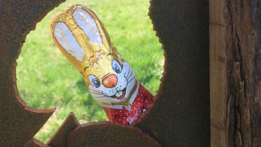 Ein Schokoladen-Osterhase guckt durch ein Loch