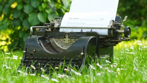 Eine alte Schreibmaschine steht auf einer Wiese