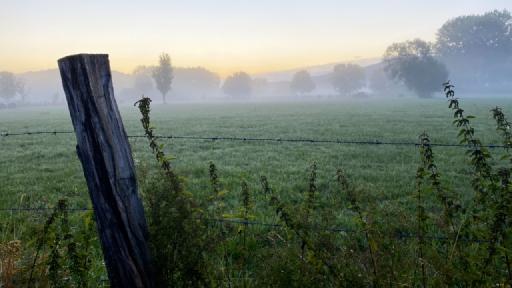 Im Vordergrund ein Weidezaun, im Hintergrund Wiesen und Bäume die im Nebel liegen.