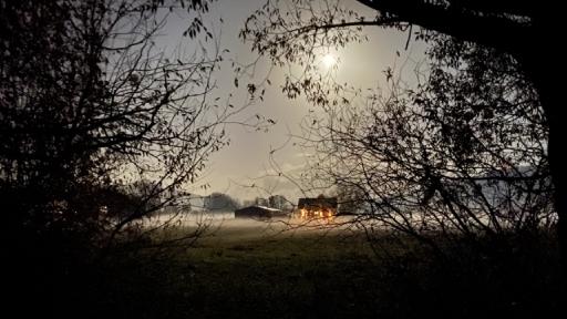 BBäume, Wiesen, Nebel, mittendrin ein Gebäude an denen Außenleuchten brennen.