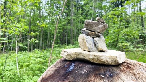 Ein kleiner Turm aus Steinen aufgestellt auf einem Holzstamm im Wald.