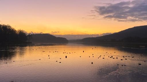 Ein See im Dämmerlicht. Darauf schwimmen Vögel. Im Hintergrund sind Berge zu sehen.