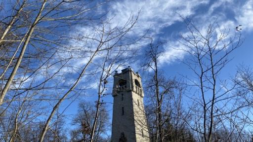 Ein Turm umrahmt von unbelaubten Bäumen.