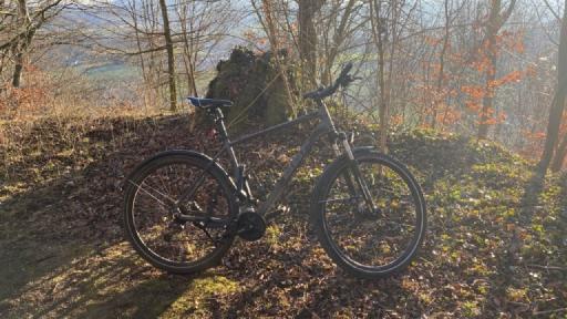 Ein Fahrrad, im Hintergrund unbelaubte Bäume und dahinter sind Berge zu erkennen.