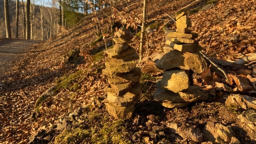 Zwei im Wald mit kleinen Steinen errichtete Türme.