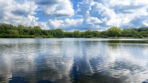 Ein See. Im Hintergrund Bäume. Bäume und Wolken spiegeln sich auf dem Wasser.