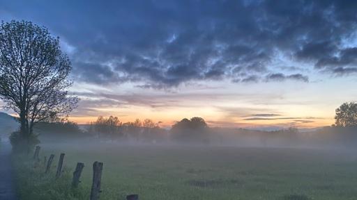 Dunkle Wolken, Bäume und Wiesen im Nebel, am Horizont Abenrot.
