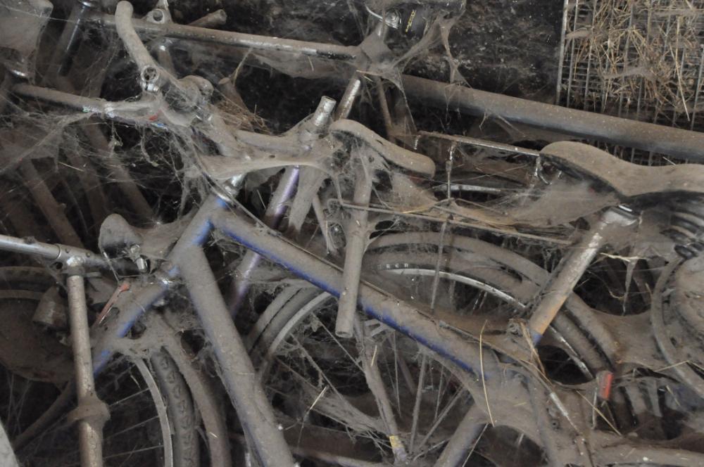 Fahrräder an denen Spinnen ihre Netze gespannt haben