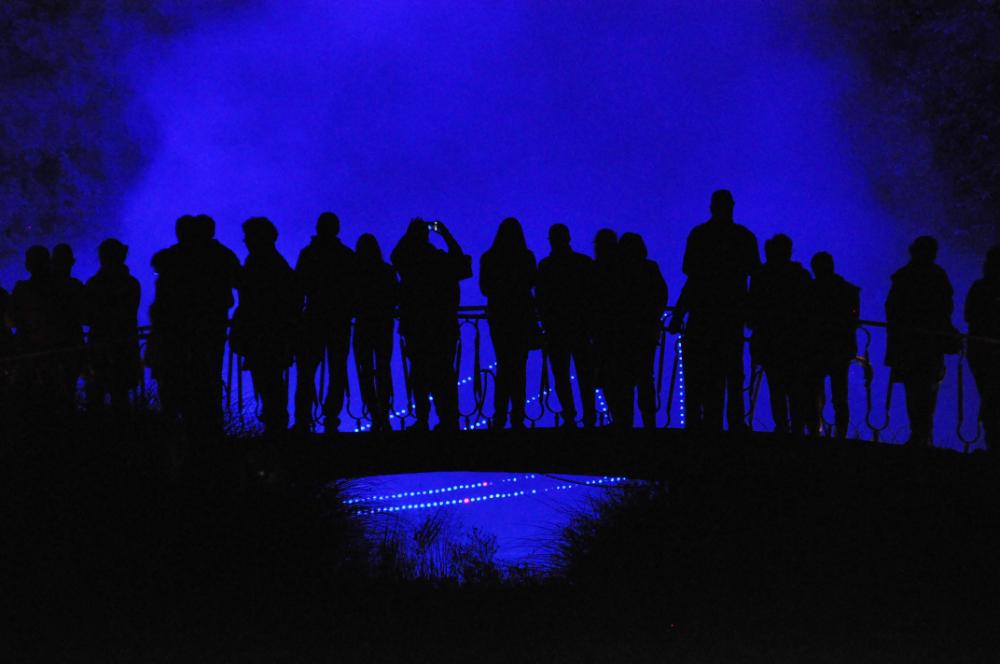 Illumina 2017, Menschen vor blau beleuchteten Bäumen