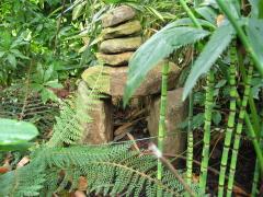 Planzen und eine kleine Skulptur aus Steinen
