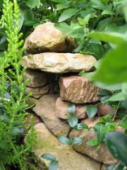 Stein-Gebilde zwischen Pflanzen