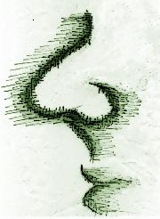 Skizze, stilisiertes Profil eines Gesichtes