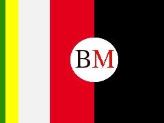 Grafik mit den Farben der Parteien im Lügder Rat, einem Kreis und darin die Buchstaben BM