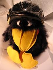 Ein Stoff-Rabe mit einem Fahrrad-Helm