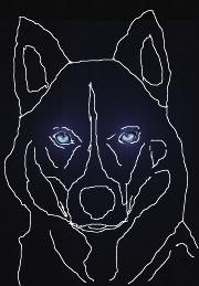 Ein stilisiert gezeichneter Kopf eines Hundes