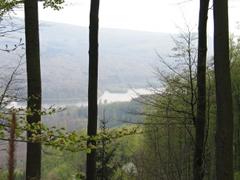 Blick von einem Berg auf einen See.