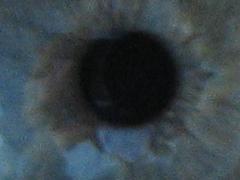 Die Iris eines Auges