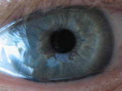 Die vollständige Iris eines Auges