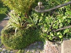Ein Treppengeländer aus Metall, Treppenstufen und verschiedene Pflanzen im Hintergrund.