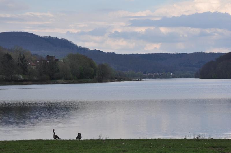 Blick auf den Schiederssee