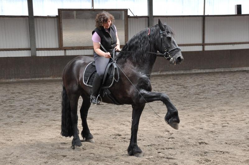 Eine Reiterin auf dem Pferd übt den spanischen Gruß