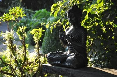 Eine Buddha-Statue, im Hintergrund viele Pflanzen.