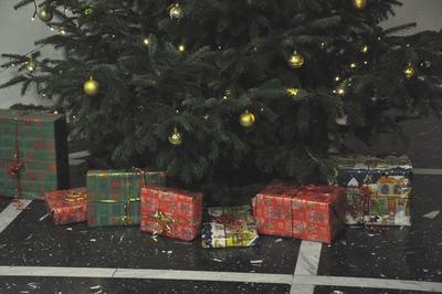Bunt verpackte Pakete unter einem Weihnachtsbaum.