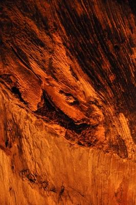 Ein Stück Eichenholz