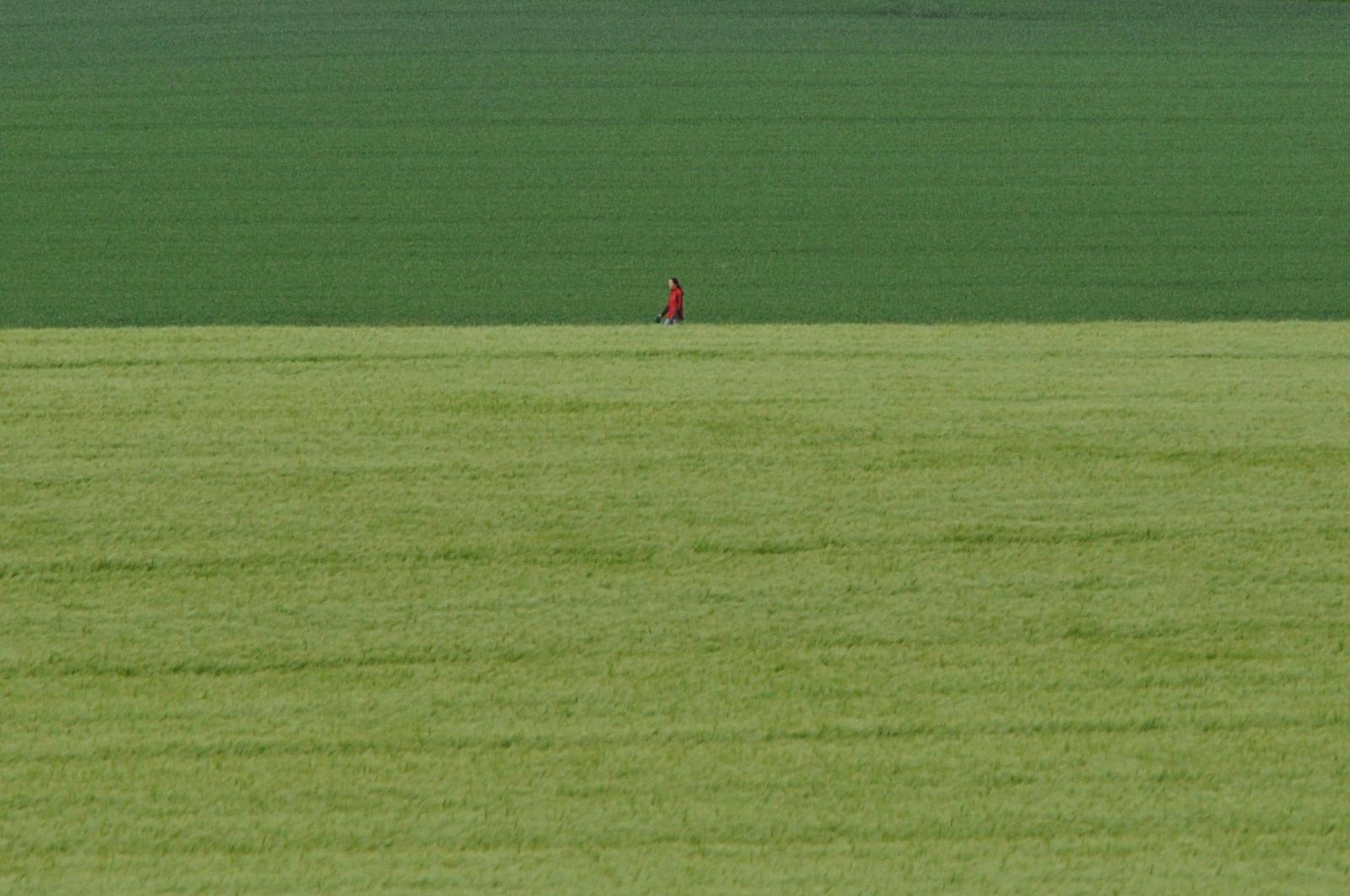 Grüne Felder und ganz klein eine Frau, die über einen Feldweg geht.