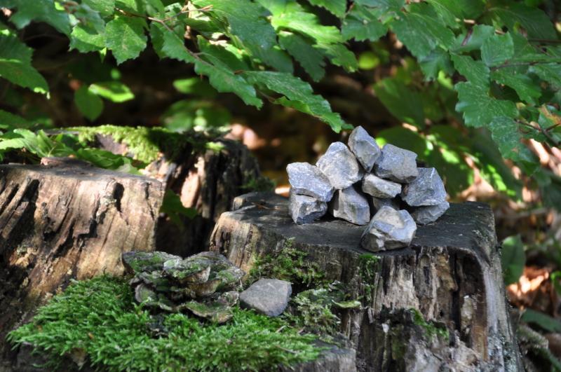 Steine auf einem Baumstumpf