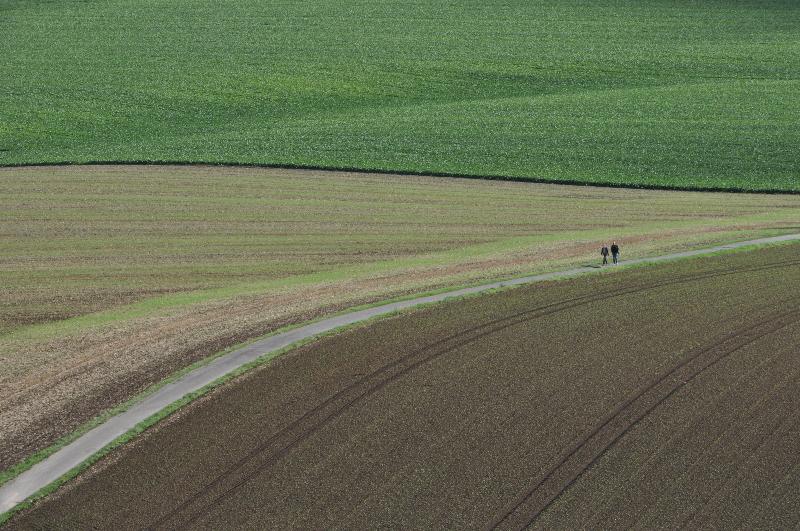 Ein Weg führt über Felder, darauf wandern zwei Personen.