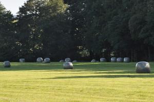 In grauer Folie gewickeltes Heu auf einem Feld.