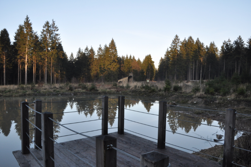 Ein Teich, im Vordergrund ein Holzsteg, im Hintergrund eine Schutzhütte für Wanderer.