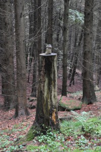 Zwei Steine sind auf einem Baumstumpf gestapelt.