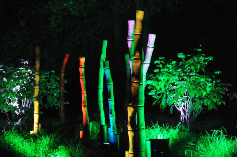 Beleuchtete Bambusstäbe im Kurpark Bad Pyrmont