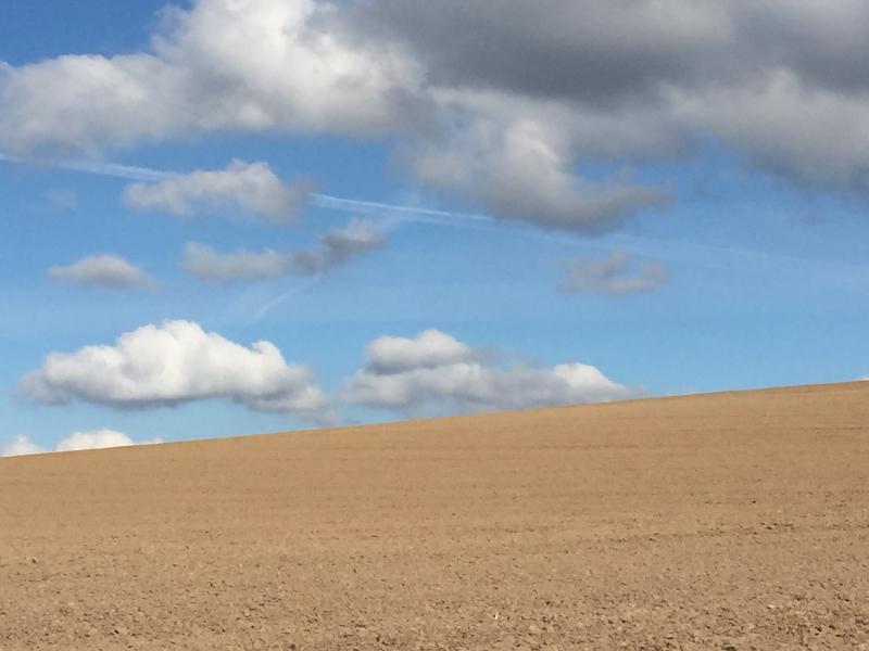 Ein Acker. Im Hintergrund hellblauer Himmel mit Wolken.