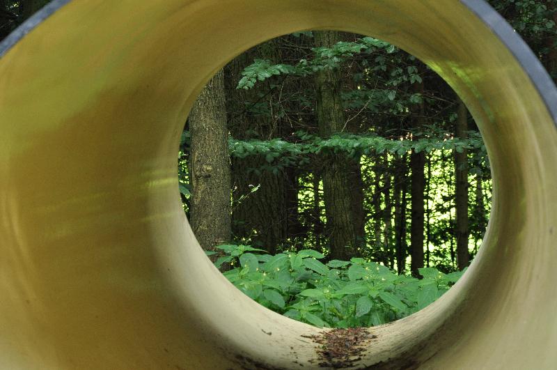 Blick durch ein Rohr in den Wald